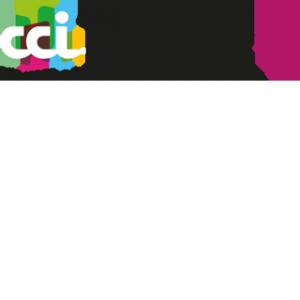 Logo CCI Toulouse