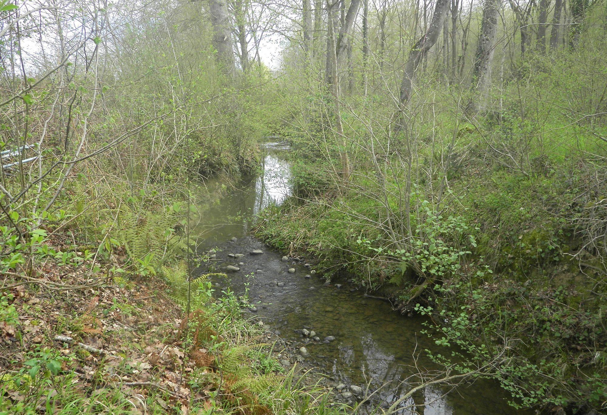 ruisseau-des-feuillants