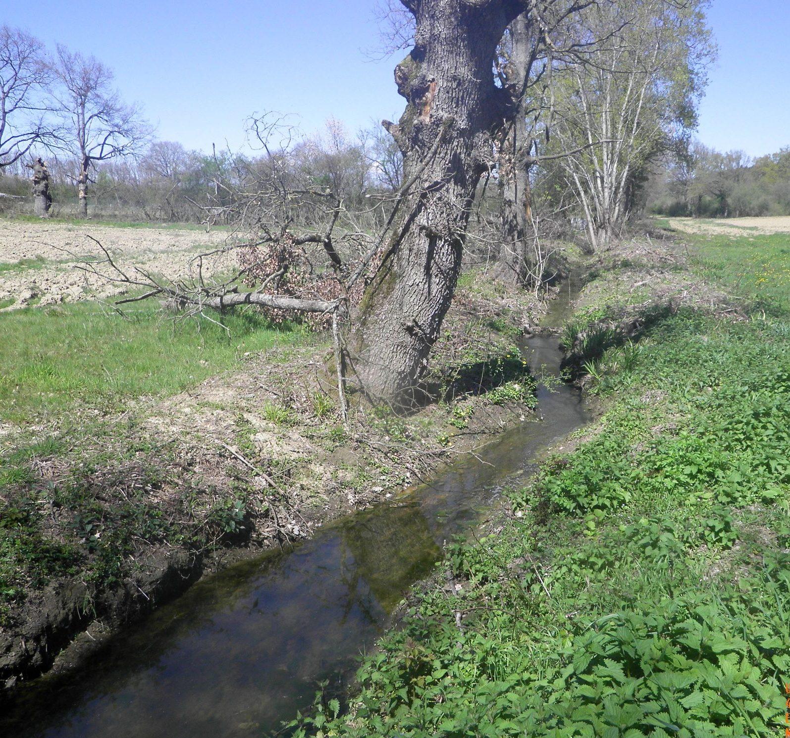 ruisseau-des-secs