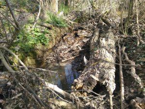 Désembâclage d'urgence sur le ruisseau du Peyre