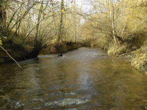 Un Programme de gestion ambitieux sur le bassin versant de la Louge